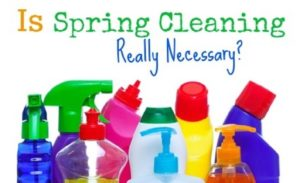 Miss-Brightsides-Maids-spring-house-cleaning-necessary-dust-allergy